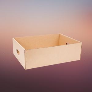 boxy food tray