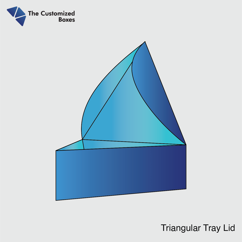 Triangular Tray Lid (1)